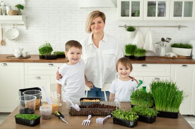 Junge mutter und ihre kinder posieren in der küche am tisch während der mikrogrünen bepflanzung.