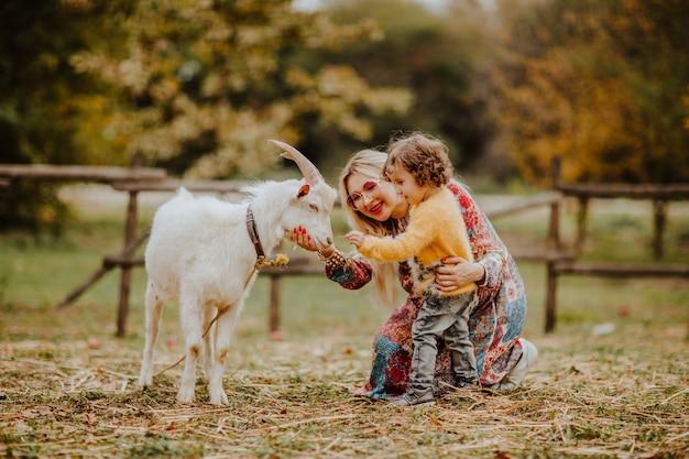 Junge schwangere frau mit kleinkindtochter, die mit weißer ziege auf einer farm spielt.