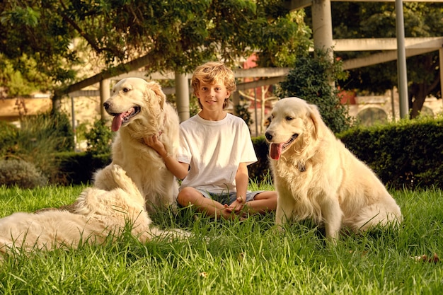 Junge streichelt flauschige hunde auf rasen