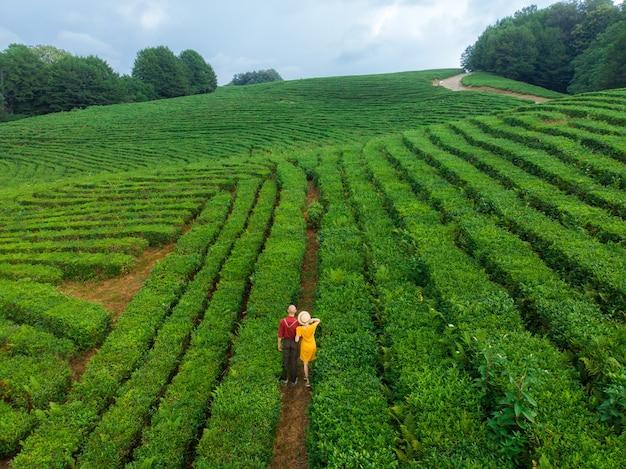 Junge touristenpaare genießen den blick auf die teeplantagen. luftaufnahme einer teefarm in sotschi