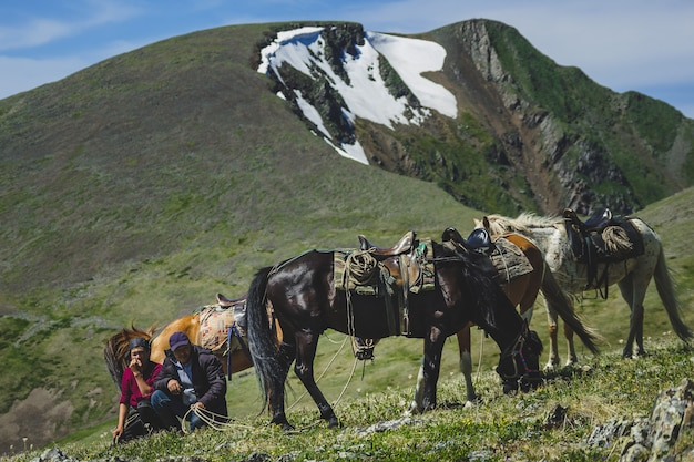 Junge und alte reiter laufen drei pferde am berghang im ulagansky-distrikt der altai-republik, russland