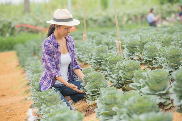 Junge weibliche landwirtin, die auf dem feld arbeitet und dekorative grünkohlpflanzen überprüft