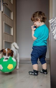 Jungen spielen mit seinem jack russell terrier hund.