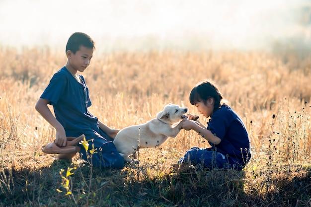 Jungen und mädchen, thailändische landwirtkinder, die mit hunden an den reispaddys spielen.
