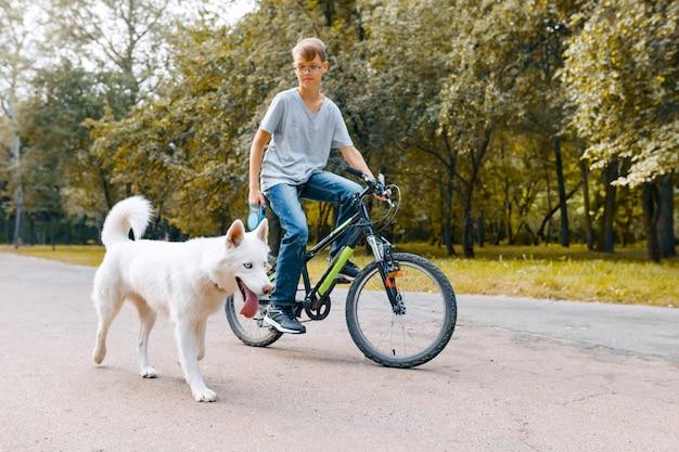 Jungenkind auf fahrrad mit weißem hundeschlittenhund