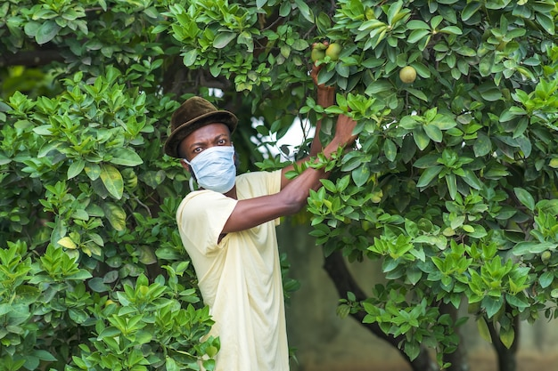 Junger afroamerikanischer mann in einer schützenden gesichtsmaske, die in seinem garten arbeitet