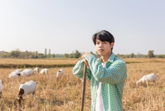 Junger asiatischer bauernmann, der mit heugabel steht und kamera verwischte ziegen betrachtet, die gras im feld essen