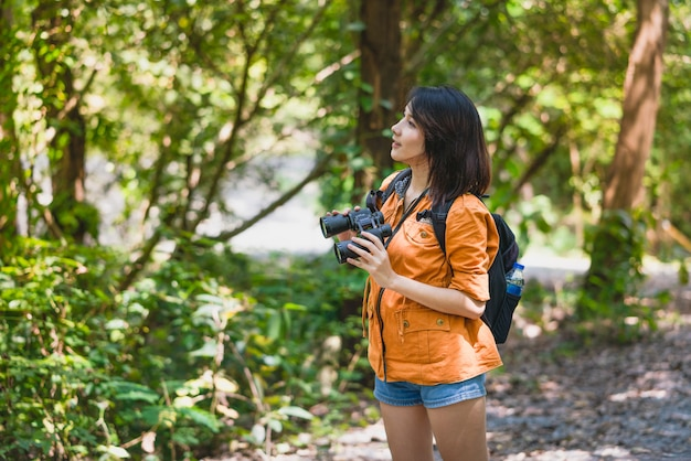 Junger asiatischer frauenwanderer mit dem fernglasfernrohr, das vögel im wald an den feiertagen schaut, machen im sommer, abenteuerreise urlaub