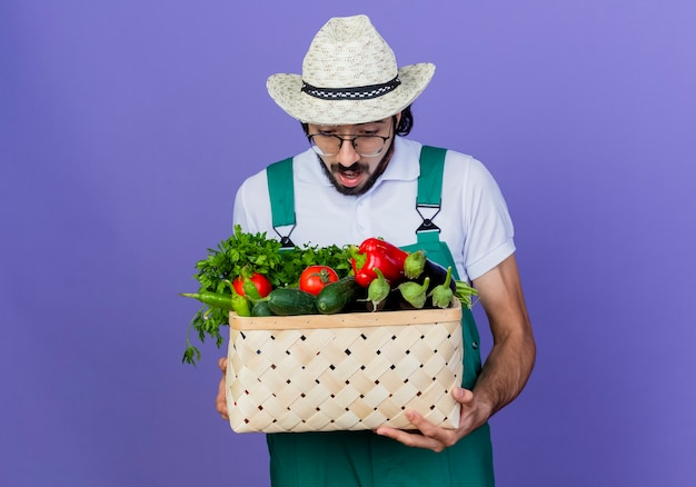 Junger bärtiger gärtnermann, der overall und hut hält kiste voll gemüse betrachtet es überrascht und erstaunt, über blauer wand stehend