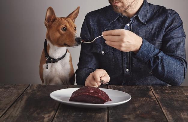 Junger bärtiger mann teilt kleines stück des großen rohen luxuswalfleischsteaks auf weinlesegabel mit seinem schönen afrikanischen hund. hund riecht fleisch.