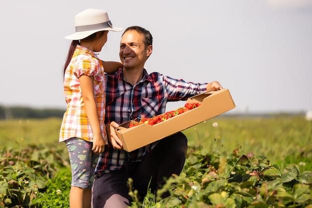 Junger bauer, der im garten arbeitet und erdbeeren für seine kleine tochter pflückt