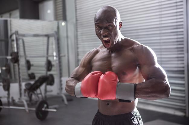 Junger bodybuilder, der vor der kamera aufwirft