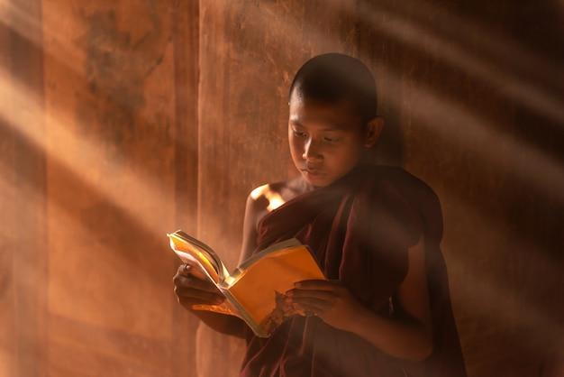 Junger buddhistischer anfängermönch, der in bagan myanmar liest.