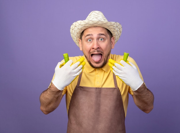 Junger gärtner, der overall und hut in arbeitshandschuhen trägt, die gebrochenes grünes chili-pfeffer halten, das gefühl, als würde es in seinem mund brennt, der über lila wand steht