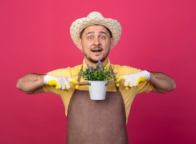 Junger gärtner, der overall und hut in den arbeitshandschuhen trägt, die topfpflanze betrachten, die vorne mit dem glücklichen gesicht lächelnd steht über rosa wand