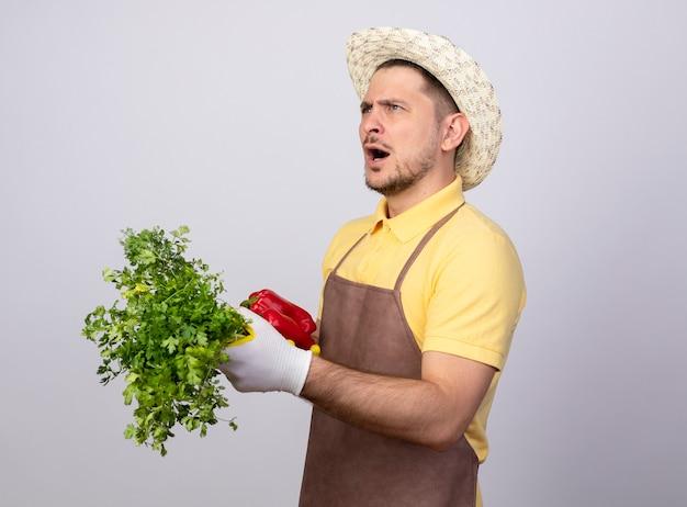 Junger gärtnermann, der overall und hut in den arbeitshandschuhen trägt, die rote paprika mit frischen kräutern halten, die verwirrt schauen