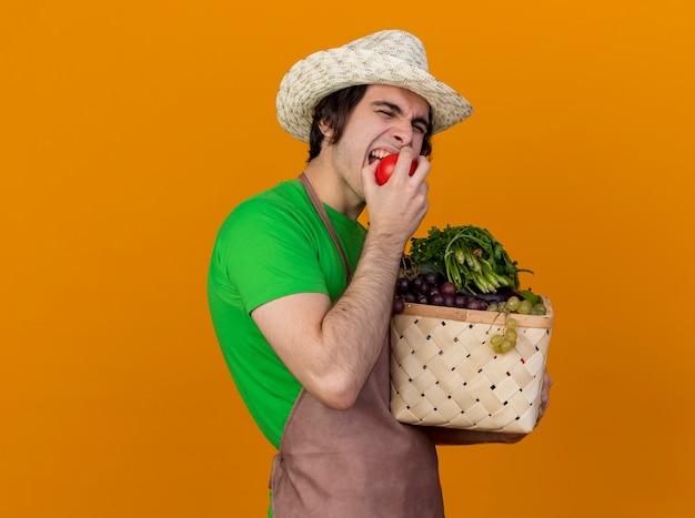 Junger gärtnermann in der schürze und im hut, die kiste voll des gemüses halten, das frische tomate beißt, die über orange wand steht