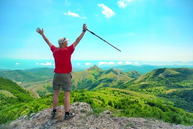 Junger glücklicher mann mit wanderstock, der auf dem felsen mit erhöhten händen steht und auf grüne landschaft schaut