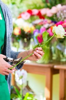 Junger hübscher florist, der rose mit zange im geschäft schneidet