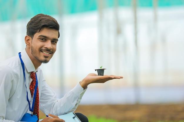 Junger indischer agronom, der kleine pflanze in der hand hält und einige informationen am gewächshaus sammelt