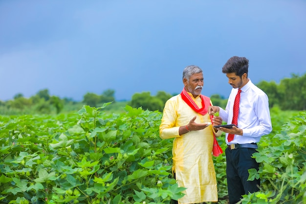 Junger indischer agronom mit landwirt am baumwollfeld und zeigt einige informationen auf handy