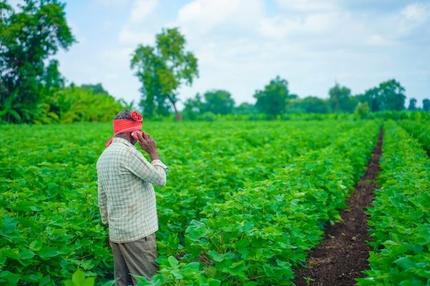 Junger indischer bauer, der handy am baumwollfeld verwendet
