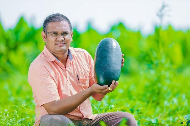 Junger indischer landwirt am wassermelonenfeld