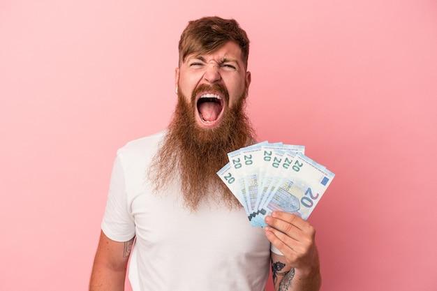 Junger kaukasischer ingwermann mit langem bart, der banknoten einzeln auf rosafarbenem hintergrund hält und sehr wütend und aggressiv schreit.