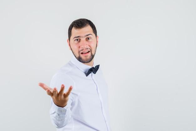 Junger kellner, der hand in der fragenden geste im weißen hemd streckt und selbstbewusst, vorderansicht schaut.