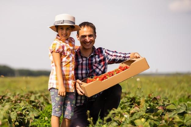 Junger landwirt, der im garten arbeitet und erdbeeren für seine kleinkindtochter pflückt