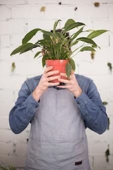 Junger männlicher florist, der die topfpflanze vor seinem gesicht hält