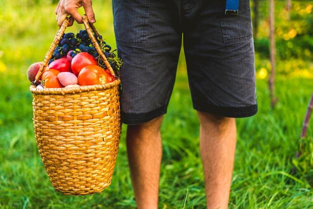 Junger männlicher landwirt, der einen korb mit gesammelten ernteobst und gemüse in einem gartenbauernhof hält