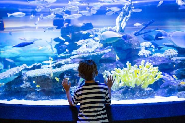 Junger mann, der ein aquarium berührt