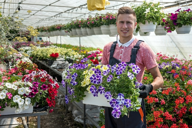 Junger mann, der eine kiste voller frühlingsblumen hält, die im industriellen gewächshaus arbeitet. botanik