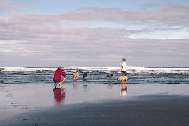 Junger mann, der fotos seiner freundin und seiner hunde auf dem strand macht