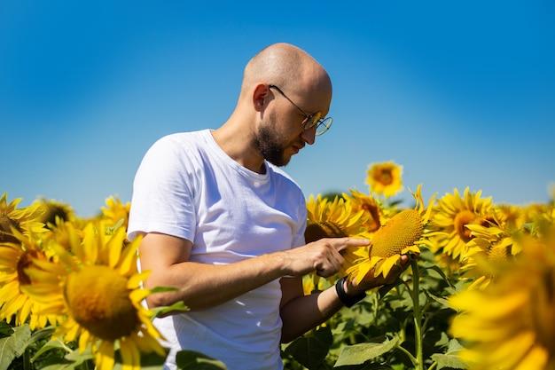 Junger mann in gläsern untersucht blumen einer sonnenblume auf einem sonnenblumenfeld gegen einen blauen himmel.