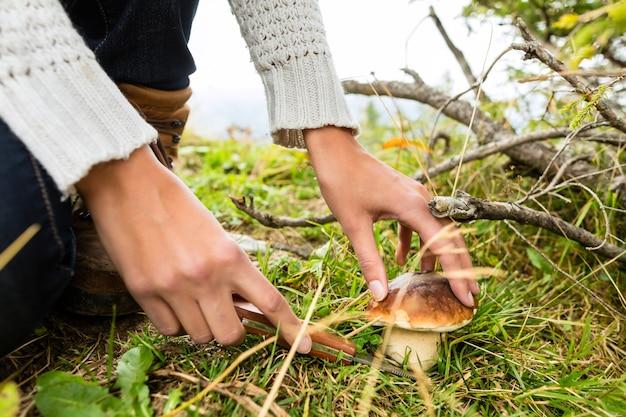 Junger pilzsammler in den bayerischen alpen