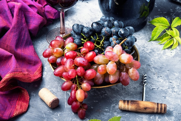 Junger rotwein