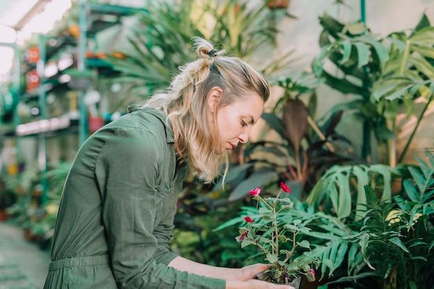 Junger weiblicher gärtner, der um anlagen sich kümmert