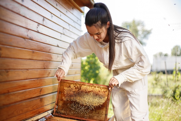 Junger weiblicher imker zieht vom bienenstock einen holzrahmen mit bienenwabe aus. sammle honig. imkerei.