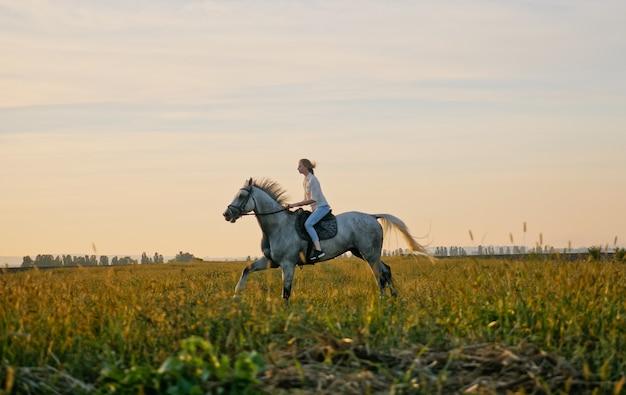 Junges blondes mädchen, das auf einem pferd auf dem feld während des sonnenuntergangs reitet. pferdehufe werfen staub auf, wenn er auf trockenem boden läuft