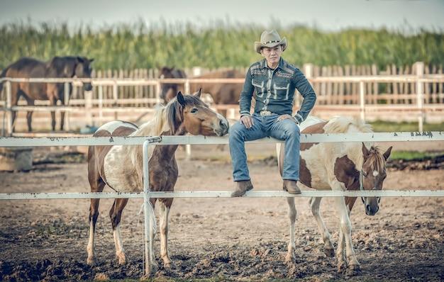 Junges cowboysitzenzimmer bei der fütterung von pferden.