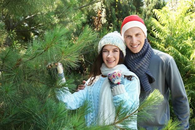 Junges glückliches paar am weihnachtsbaummarkt