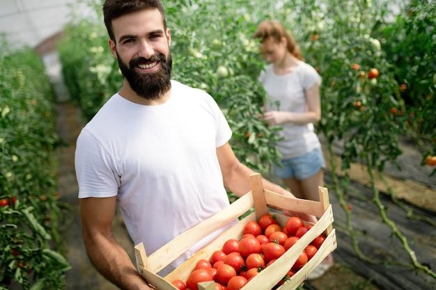 Junges glückliches paar landwirte, die im gewächshaus arbeiten