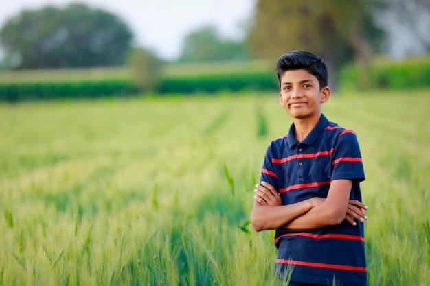 Junges indisches kind im goldenen weizenfeld
