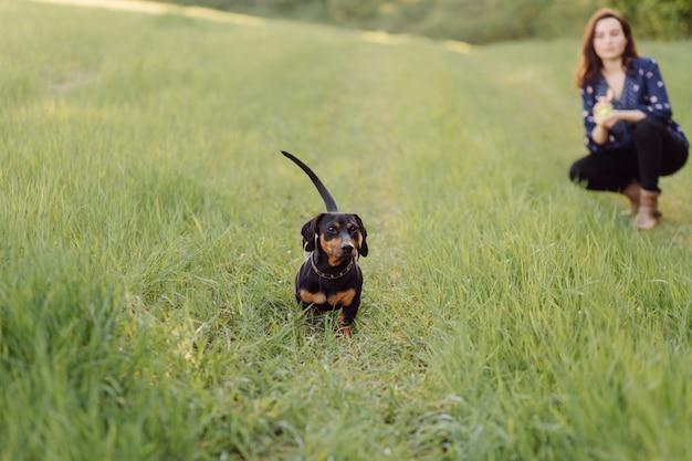 Junges mädchen auf einem spaziergang mit ihrem welpen