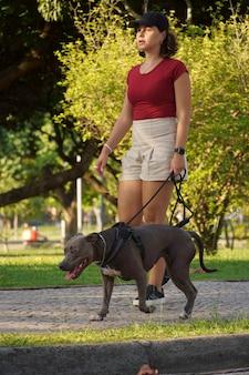 Junges mädchen, das bei sonnenuntergang den pitbull-hund im park spazieren geht.