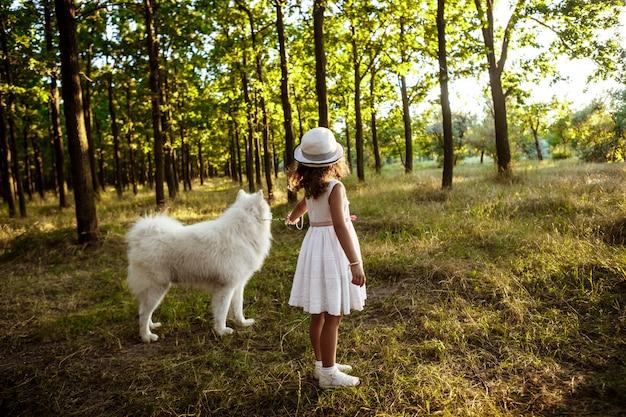 Junges mädchen, das mit hund im park bei sonnenuntergang spielt.