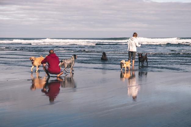 Junges paar, das fotos macht und mit ihren fünf hunden am strand im frühling in asturien, spanien spielt. einer der hunde scheißt ins meer