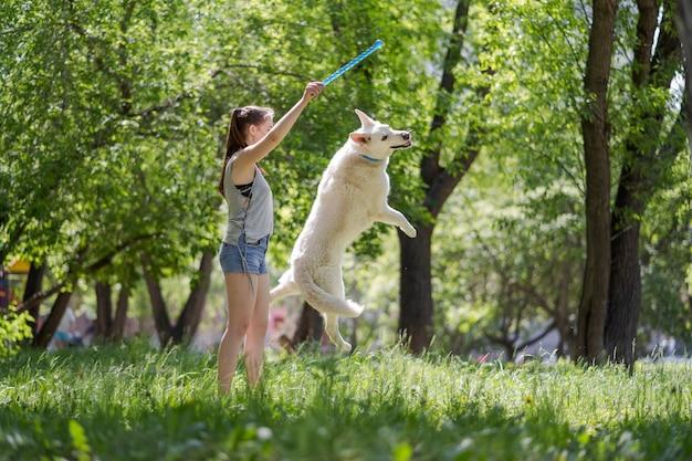 Junges schönes mädchen, das zu ihrem hund in einem park bei sonnenuntergang wirft